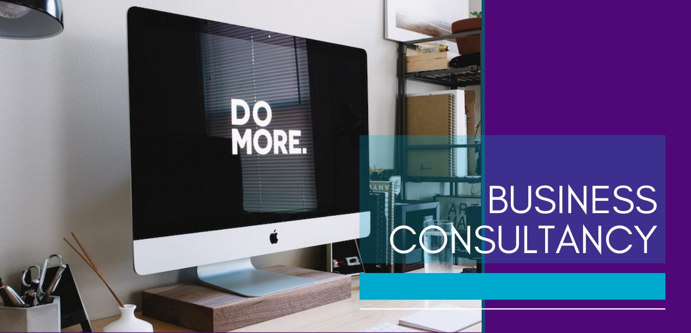 Business consultancy, Mindsetup summary